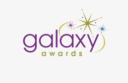 galaxy awards new york winner, GAXWEB Werbeagentur und Internetagentur in Karlsruhe