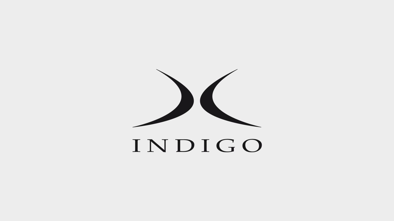 Indigo-Bogner Ski Hardware
